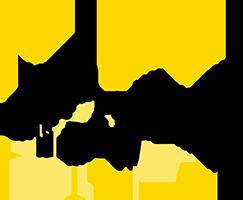 Odis-c Logo